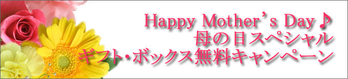 母の日キャンペーン2017
