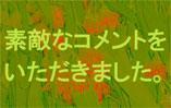 ���Ȥ�褻�ͥåȤϤ��ߤĥ����ȥ����1