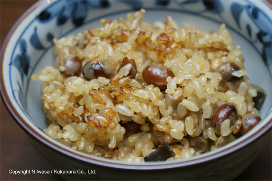 はちみつレシピオーストラリア産ユーカリはちみつレッド・ストリンギーバークで作る炒り大豆と玄米の炊き込みご飯5