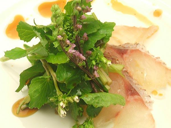 はちみつを使ったアイデアいろいろユーカリはちみつアイアンバーク花わさび桜鯛のカルパッチョ1