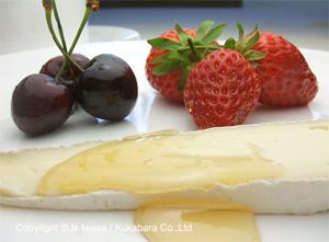 はちみつ講座「はちみつとチーズのマリアージュ」
