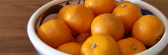 はちみつレシピオーストラリア産ユーカリはちみつレッド・ストリンギーバークで作るかぼちゃのスコーン1