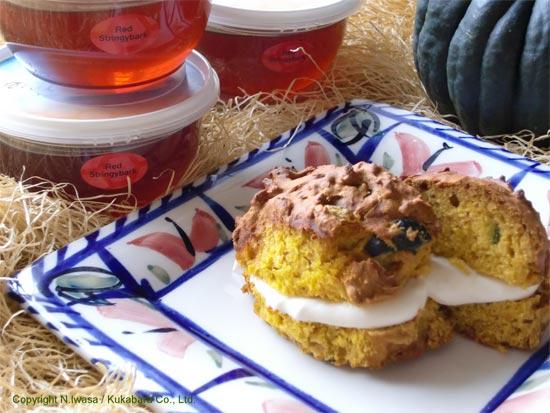 はちみつレシピオーストラリア産ユーカリはちみつレッド・ストリンギーバークで作るかぼちゃのスコーン5