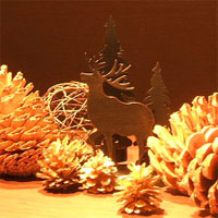 NHK文化センター豊橋一日講座「はちみつを使ったフィンガーフードで楽しむクリスマス」a